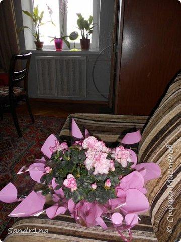Фоторепортаж Мои фантазии (цветы) фото 7