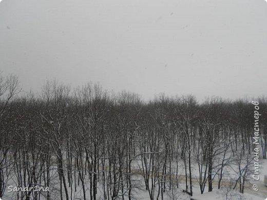 Фото. Мои фантазии (Наш лес и я ) фото 11
