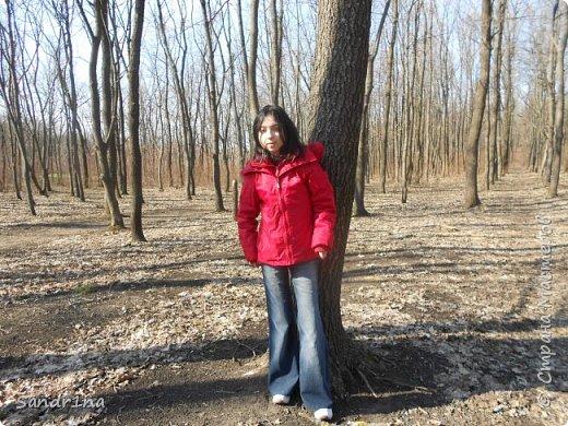 Фото. Мои фантазии (Наш лес и я ) фото 25
