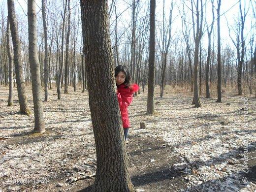 Фото. Мои фантазии (Наш лес и я ) фото 26