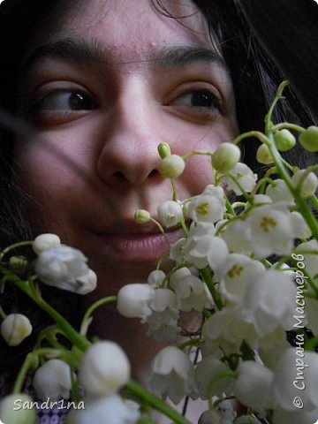 Фоторепортаж Мои фантазии (цветы) фото 1