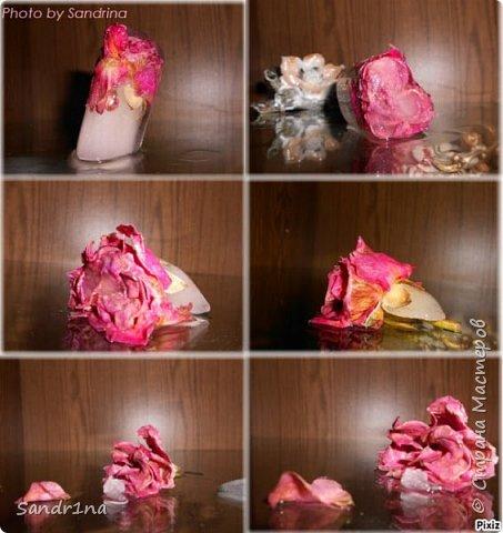 Фото. Мои фантазии (роза в куске льда) фото 1