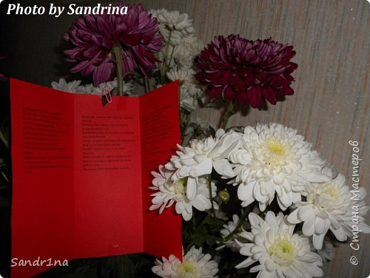 Фоторепортаж Мои фантазии (цветы) фото 15