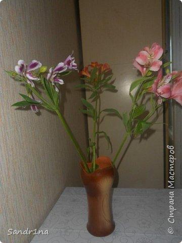 Фоторепортаж Мои фантазии (цветы) фото 16