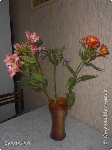 Фоторепортаж Мои фантазии (цветы) фото 19