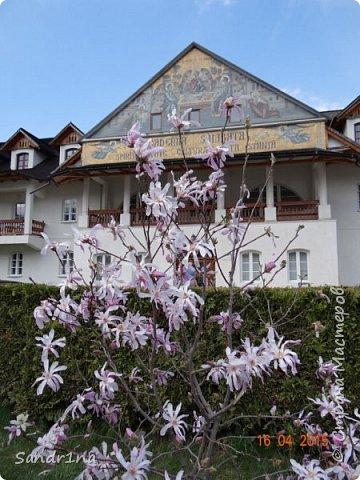 Монастырь Брынковеану.... фото 18