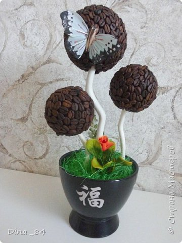 Кофейные топиарии. фото 12