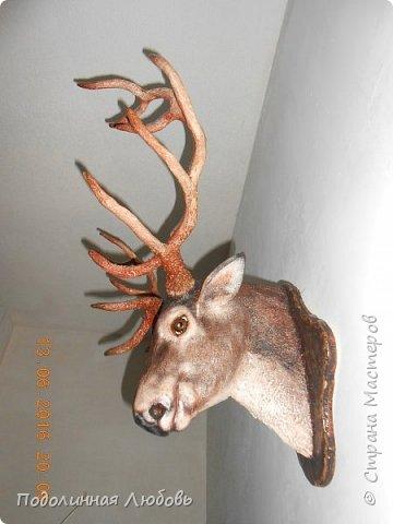 Моя давняя хотелка, и показательная работа в моем кружке. Голова оленя почти в натуральную величину. Высота модели 65 см, размах рогов - 62 см. фото 2