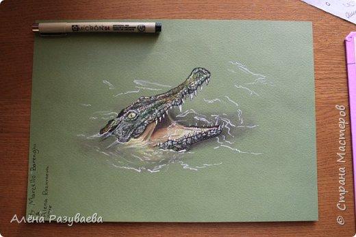 На создание этого крокодила меня вдохновило видео speed-drawing от Marcello Barenghi фото 1