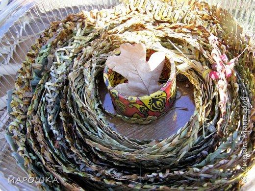 по книге начала плести тесемочки, соломки настоящей не нашла, пробовала лист кукурузы,лист осоки, соломины мятлика, вейника,ежи фото 3