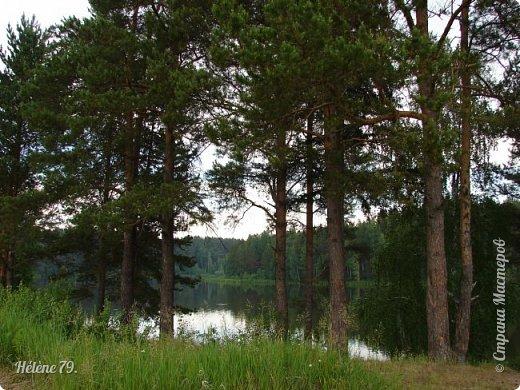Летний вечер тих и ясен; Посмотри, как дремлют ивы; Запад неба бледно-красен, И реки блестят извивы.  От вершин скользя к вершинам, Ветр ползет лесною высью...  (А. Фет)  фото 1