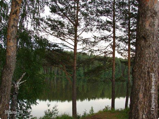 Летний вечер тих и ясен; Посмотри, как дремлют ивы; Запад неба бледно-красен, И реки блестят извивы.  От вершин скользя к вершинам, Ветр ползет лесною высью...  (А. Фет)  фото 2