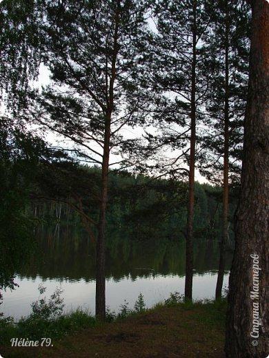 Летний вечер тих и ясен; Посмотри, как дремлют ивы; Запад неба бледно-красен, И реки блестят извивы.  От вершин скользя к вершинам, Ветр ползет лесною высью...  (А. Фет)  фото 3