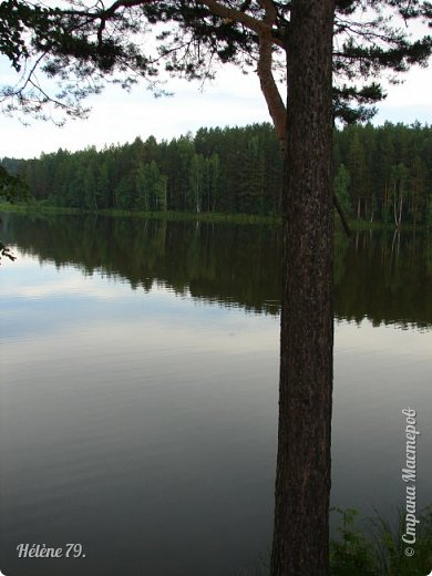 Летний вечер тих и ясен; Посмотри, как дремлют ивы; Запад неба бледно-красен, И реки блестят извивы.  От вершин скользя к вершинам, Ветр ползет лесною высью...  (А. Фет)  фото 7