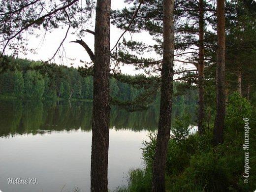 Летний вечер тих и ясен; Посмотри, как дремлют ивы; Запад неба бледно-красен, И реки блестят извивы.  От вершин скользя к вершинам, Ветр ползет лесною высью...  (А. Фет)  фото 8