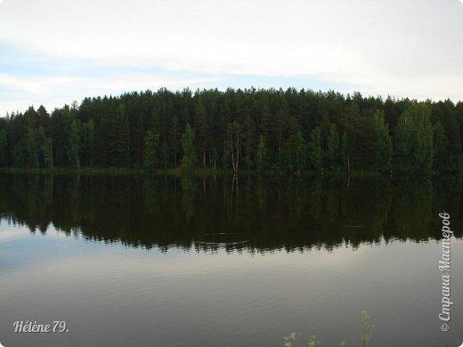 Летний вечер тих и ясен; Посмотри, как дремлют ивы; Запад неба бледно-красен, И реки блестят извивы.  От вершин скользя к вершинам, Ветр ползет лесною высью...  (А. Фет)  фото 10
