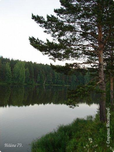 Летний вечер тих и ясен; Посмотри, как дремлют ивы; Запад неба бледно-красен, И реки блестят извивы.  От вершин скользя к вершинам, Ветр ползет лесною высью...  (А. Фет)  фото 13
