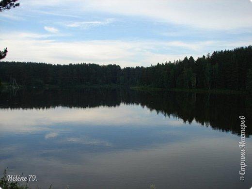 Летний вечер тих и ясен; Посмотри, как дремлют ивы; Запад неба бледно-красен, И реки блестят извивы.  От вершин скользя к вершинам, Ветр ползет лесною высью...  (А. Фет)  фото 15