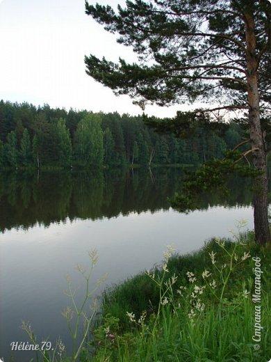 Летний вечер тих и ясен; Посмотри, как дремлют ивы; Запад неба бледно-красен, И реки блестят извивы.  От вершин скользя к вершинам, Ветр ползет лесною высью...  (А. Фет)  фото 17