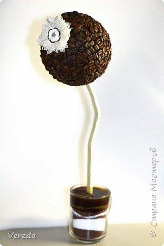 Кофейные топиарии фото 2