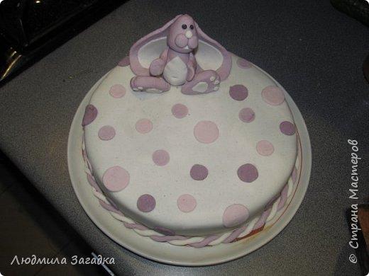 Вот такой торт у меня получился к Дню рождения моей доченьки) фото 2