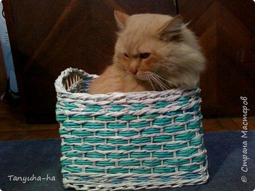 Моя первая шкатулка, красила краской для яиц, на крышке обои под покраску. фото 6