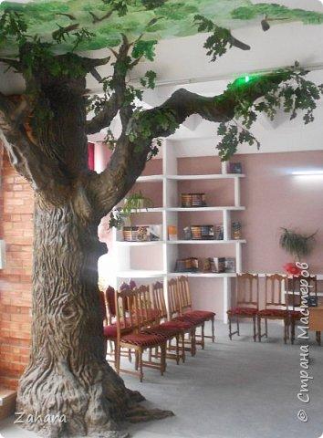 """Этот дуб """"вырос"""" с моей помощью в музейной комнате строительного лицея. Высота ок. 4 метров, ствол - кирпичи, кора - штукатурка.  фото 2"""