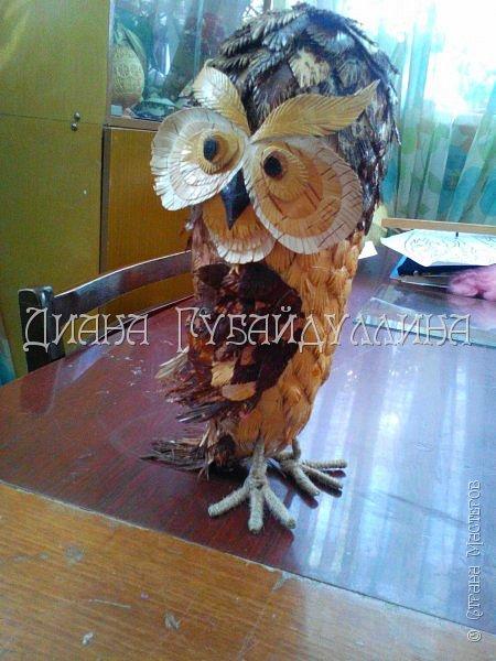 Сделала вот такую сову из бересты. фото 1