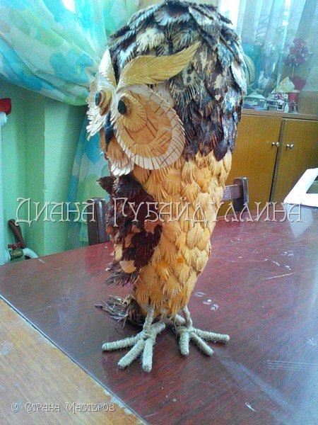 Сделала вот такую сову из бересты. фото 3