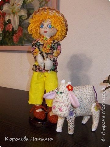 Пастушок фото 2