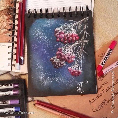 Здравствуйте, дорогие любители рисовать! Сегодня хочу поделиться с вами своим творческим настроением! давайте нарисуем рябину в снегу! фото 1