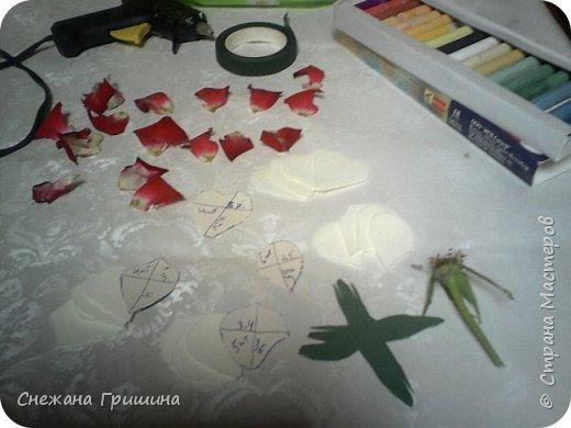 Здравствуйте дорогие жители Страны Мастеров!!! Пока цветут цветы в саду,я сделаю несколько разборов по цветам!! Я часто ищу разборы по цветам,и может мои цветы кому нибудь пригодятся!! Сегодня вашему вниманию я представляю розу Николь фото 7