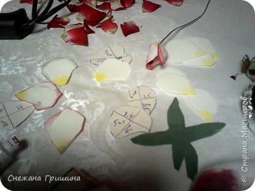 Здравствуйте дорогие жители Страны Мастеров!!! Пока цветут цветы в саду,я сделаю несколько разборов по цветам!! Я часто ищу разборы по цветам,и может мои цветы кому нибудь пригодятся!! Сегодня вашему вниманию я представляю розу Николь фото 15