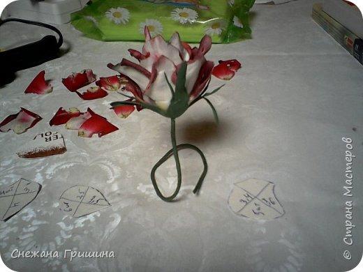 Здравствуйте дорогие жители Страны Мастеров!!! Пока цветут цветы в саду,я сделаю несколько разборов по цветам!! Я часто ищу разборы по цветам,и может мои цветы кому нибудь пригодятся!! Сегодня вашему вниманию я представляю розу Николь фото 16
