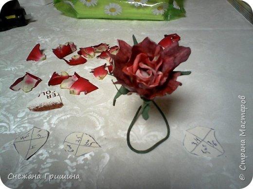 Здравствуйте дорогие жители Страны Мастеров!!! Пока цветут цветы в саду,я сделаю несколько разборов по цветам!! Я часто ищу разборы по цветам,и может мои цветы кому нибудь пригодятся!! Сегодня вашему вниманию я представляю розу Николь фото 17