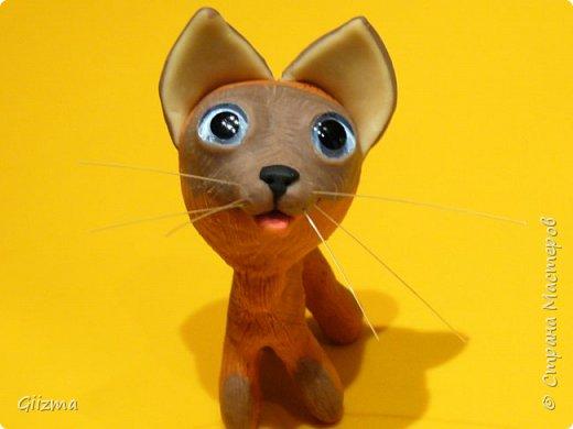 Здравствуйте! Это моя очередная неудачная (по-моему, уже четвертая) попытка сделать котенка по имени Гав. Не художник я совсем :(   Что ж, Гав не получился, но тот, кто получился, как мне кажется, имеет право на существование. Добрый и трогательный, пусть и не красавец.  Пусть его имя будет Мяв :)))) фото 5
