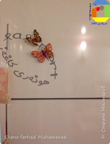 butterfly magnet фото 2