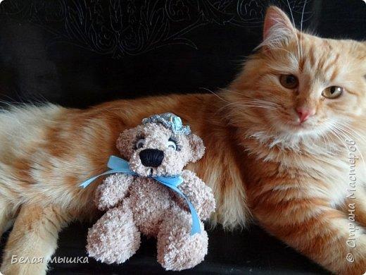 Наш рыжий член семьи не может пройти мимо ни одной вязаной игрушки. Вот и снова связался для него новый друг. Все же я ловлю себя на мысли, что очень люблю вязать этих очаровательных мих. К тому же и котэ меня морально поддерживает в любви к этим мишкам. фото 1