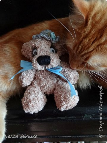 Наш рыжий член семьи не может пройти мимо ни одной вязаной игрушки. Вот и снова связался для него новый друг. Все же я ловлю себя на мысли, что очень люблю вязать этих очаровательных мих. К тому же и котэ меня морально поддерживает в любви к этим мишкам. фото 2