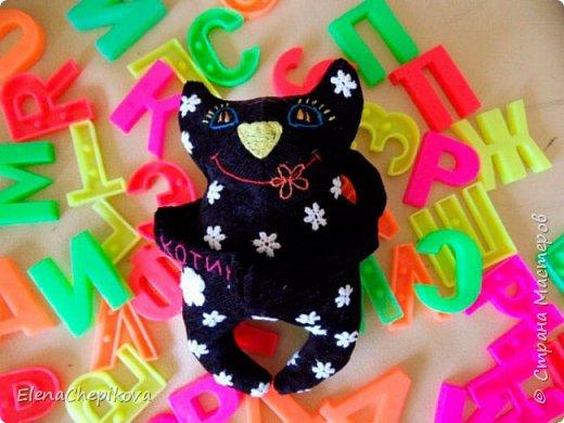 Шитый Котик фото 3