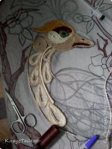 очередная птичка неизвестной породы фото 2