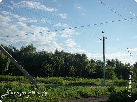 """За сегодня это мой второй блог... Итак, на часах ровно шесть утра... Я проснулась намного раньше, где-то в половине пятого, но до шести рисовала на улице, специально ждала, когда солнце взойдет немного повыше.  Я живу на Донбассе, в городе Макеевке, в Ханжонково, в поселке Фурманово...  Как известно, в Донецкой области очень много шахт, а посему и терриконов. У нас большого террикона нет, зато есть небольшие холмы. Они состоят из тех же камней, что и терриконы, только по размерам намного меньше. Самая большая высота над уровнем земли - не больше 4 метров. Мы зовем это - бугор. Да, так и зовем))) Например: """"Не ходи на бугор"""", """" Пошли на бугор"""" и т.д. На бугре очень много берез. Из них есть моя любимая))) На ней очень удобно лазить... фото 1"""