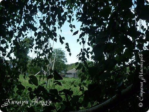 """За сегодня это мой второй блог... Итак, на часах ровно шесть утра... Я проснулась намного раньше, где-то в половине пятого, но до шести рисовала на улице, специально ждала, когда солнце взойдет немного повыше.  Я живу на Донбассе, в городе Макеевке, в Ханжонково, в поселке Фурманово...  Как известно, в Донецкой области очень много шахт, а посему и терриконов. У нас большого террикона нет, зато есть небольшие холмы. Они состоят из тех же камней, что и терриконы, только по размерам намного меньше. Самая большая высота над уровнем земли - не больше 4 метров. Мы зовем это - бугор. Да, так и зовем))) Например: """"Не ходи на бугор"""", """" Пошли на бугор"""" и т.д. На бугре очень много берез. Из них есть моя любимая))) На ней очень удобно лазить... фото 16"""