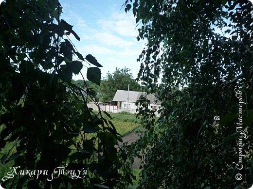 """За сегодня это мой второй блог... Итак, на часах ровно шесть утра... Я проснулась намного раньше, где-то в половине пятого, но до шести рисовала на улице, специально ждала, когда солнце взойдет немного повыше.  Я живу на Донбассе, в городе Макеевке, в Ханжонково, в поселке Фурманово...  Как известно, в Донецкой области очень много шахт, а посему и терриконов. У нас большого террикона нет, зато есть небольшие холмы. Они состоят из тех же камней, что и терриконы, только по размерам намного меньше. Самая большая высота над уровнем земли - не больше 4 метров. Мы зовем это - бугор. Да, так и зовем))) Например: """"Не ходи на бугор"""", """" Пошли на бугор"""" и т.д. На бугре очень много берез. Из них есть моя любимая))) На ней очень удобно лазить... фото 18"""