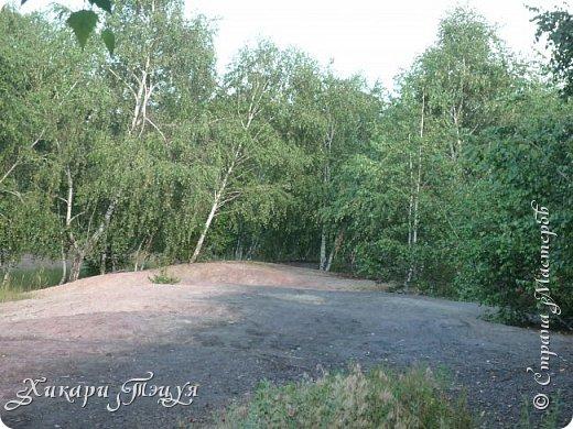 """За сегодня это мой второй блог... Итак, на часах ровно шесть утра... Я проснулась намного раньше, где-то в половине пятого, но до шести рисовала на улице, специально ждала, когда солнце взойдет немного повыше.  Я живу на Донбассе, в городе Макеевке, в Ханжонково, в поселке Фурманово...  Как известно, в Донецкой области очень много шахт, а посему и терриконов. У нас большого террикона нет, зато есть небольшие холмы. Они состоят из тех же камней, что и терриконы, только по размерам намного меньше. Самая большая высота над уровнем земли - не больше 4 метров. Мы зовем это - бугор. Да, так и зовем))) Например: """"Не ходи на бугор"""", """" Пошли на бугор"""" и т.д. На бугре очень много берез. Из них есть моя любимая))) На ней очень удобно лазить... фото 22"""