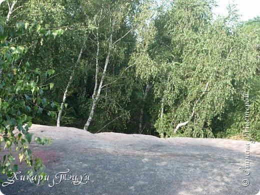 """За сегодня это мой второй блог... Итак, на часах ровно шесть утра... Я проснулась намного раньше, где-то в половине пятого, но до шести рисовала на улице, специально ждала, когда солнце взойдет немного повыше.  Я живу на Донбассе, в городе Макеевке, в Ханжонково, в поселке Фурманово...  Как известно, в Донецкой области очень много шахт, а посему и терриконов. У нас большого террикона нет, зато есть небольшие холмы. Они состоят из тех же камней, что и терриконы, только по размерам намного меньше. Самая большая высота над уровнем земли - не больше 4 метров. Мы зовем это - бугор. Да, так и зовем))) Например: """"Не ходи на бугор"""", """" Пошли на бугор"""" и т.д. На бугре очень много берез. Из них есть моя любимая))) На ней очень удобно лазить... фото 32"""