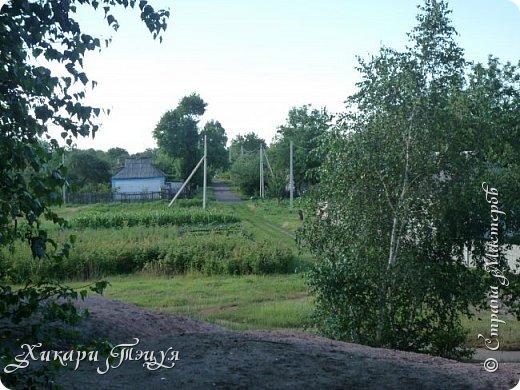 """За сегодня это мой второй блог... Итак, на часах ровно шесть утра... Я проснулась намного раньше, где-то в половине пятого, но до шести рисовала на улице, специально ждала, когда солнце взойдет немного повыше.  Я живу на Донбассе, в городе Макеевке, в Ханжонково, в поселке Фурманово...  Как известно, в Донецкой области очень много шахт, а посему и терриконов. У нас большого террикона нет, зато есть небольшие холмы. Они состоят из тех же камней, что и терриконы, только по размерам намного меньше. Самая большая высота над уровнем земли - не больше 4 метров. Мы зовем это - бугор. Да, так и зовем))) Например: """"Не ходи на бугор"""", """" Пошли на бугор"""" и т.д. На бугре очень много берез. Из них есть моя любимая))) На ней очень удобно лазить... фото 43"""