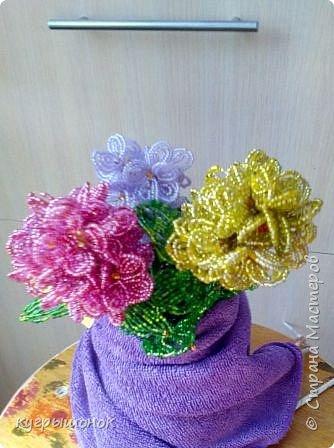 Результат наблюдений за цветущими растениями:) фото 2