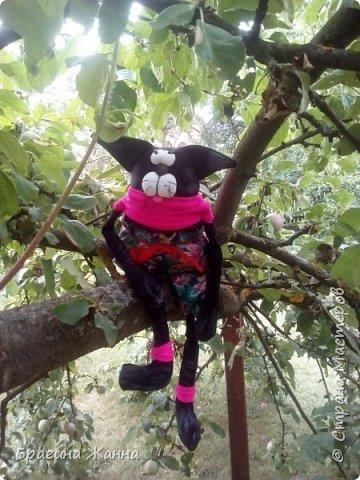 Всем жителям замечательной страны огромный привет!сегодня я к вам с черненьким котиком)))))вот такой прикольный котик у меня получился!приглашаю вас к просмотру! фото 3