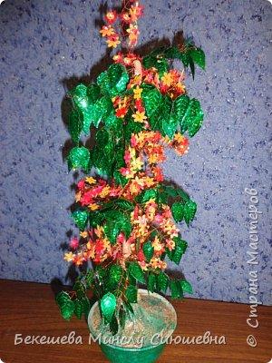 "Топиарий ""Деревья радости"" фото 14"